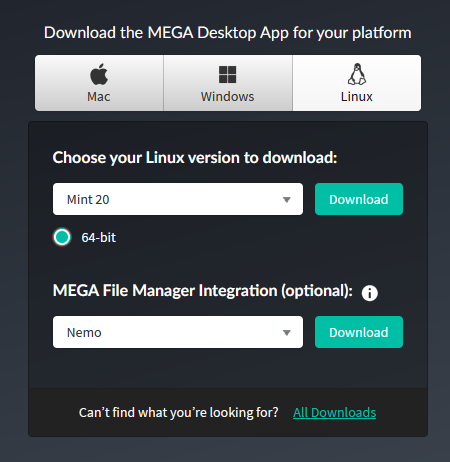 2020-11-13 12_39_25-MEGA Desktop App - MEGA - Firefox Developer Edition
